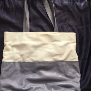 Cole Haan blue on blue magazine tote